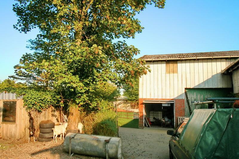 ABreissen & NEUbauen * ca. 1600 m² Grundstück zwischen Rendsburg und Heide !
