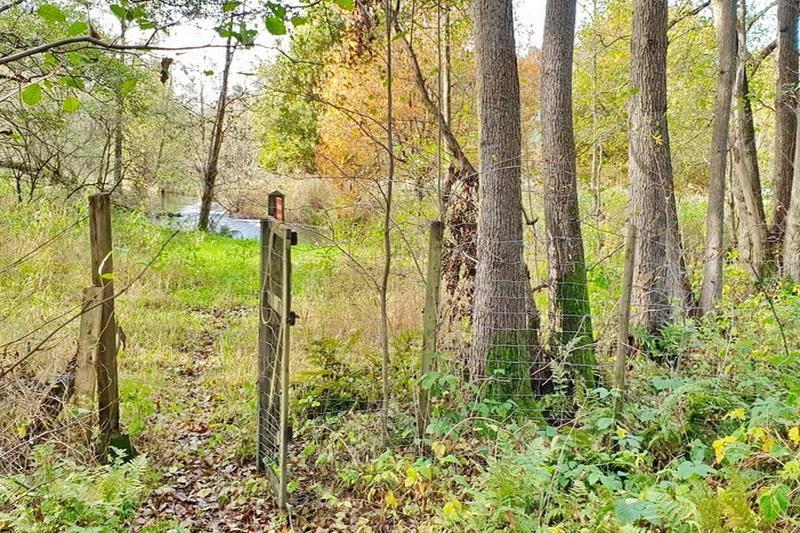 Zugang zum Fluss