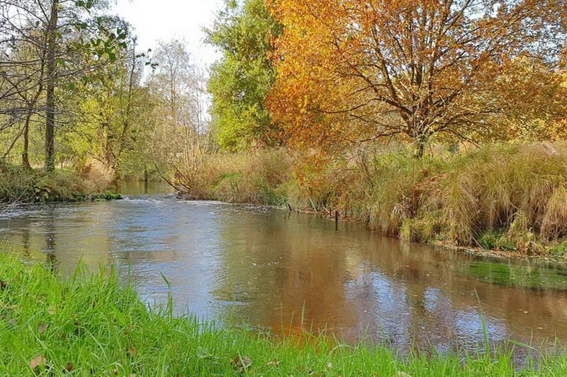 Fluss am Grundstück